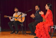 Fem Dansa. Espectacle flamenc